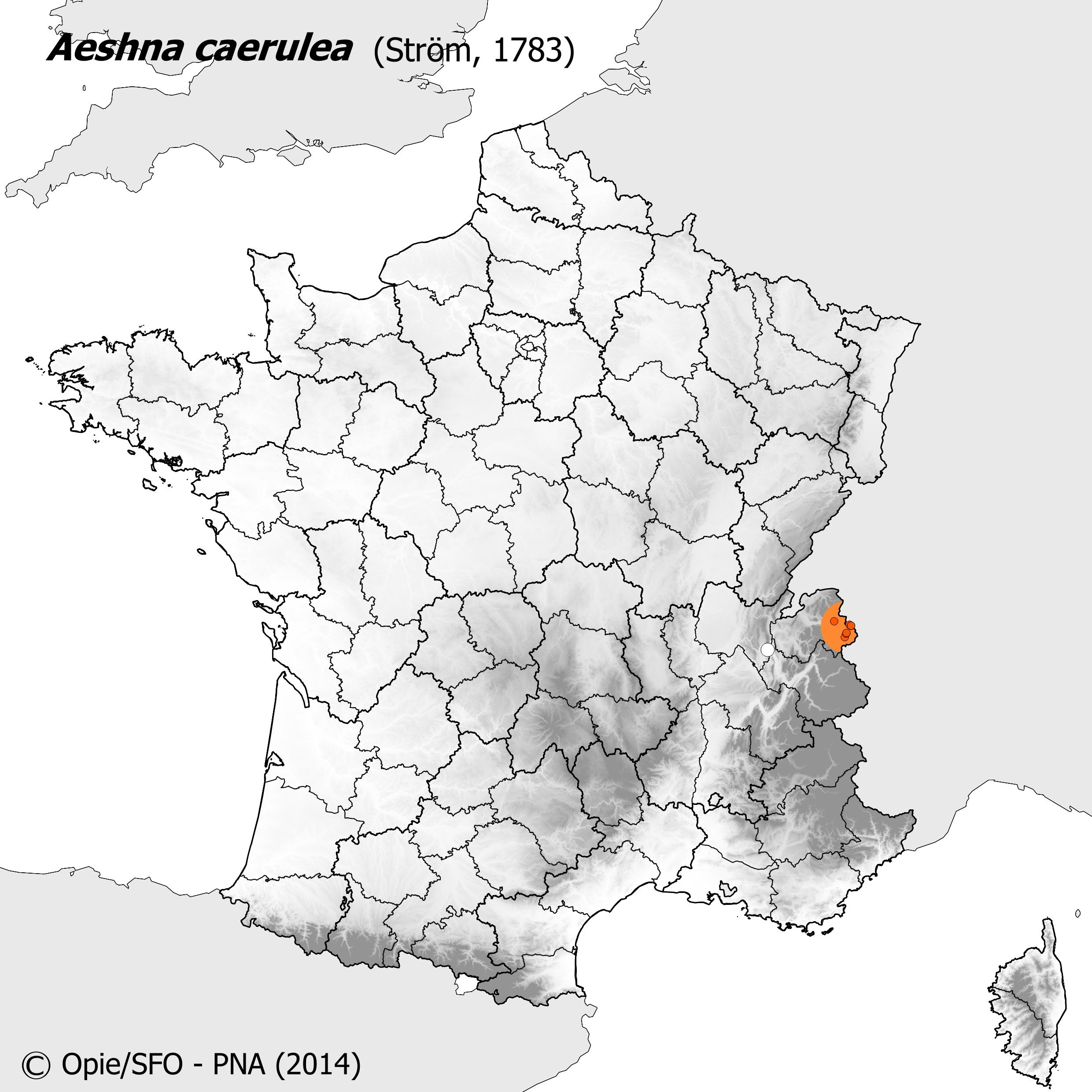 Plan National Actions Odonates | carte de repartition de aeshna caerulea
