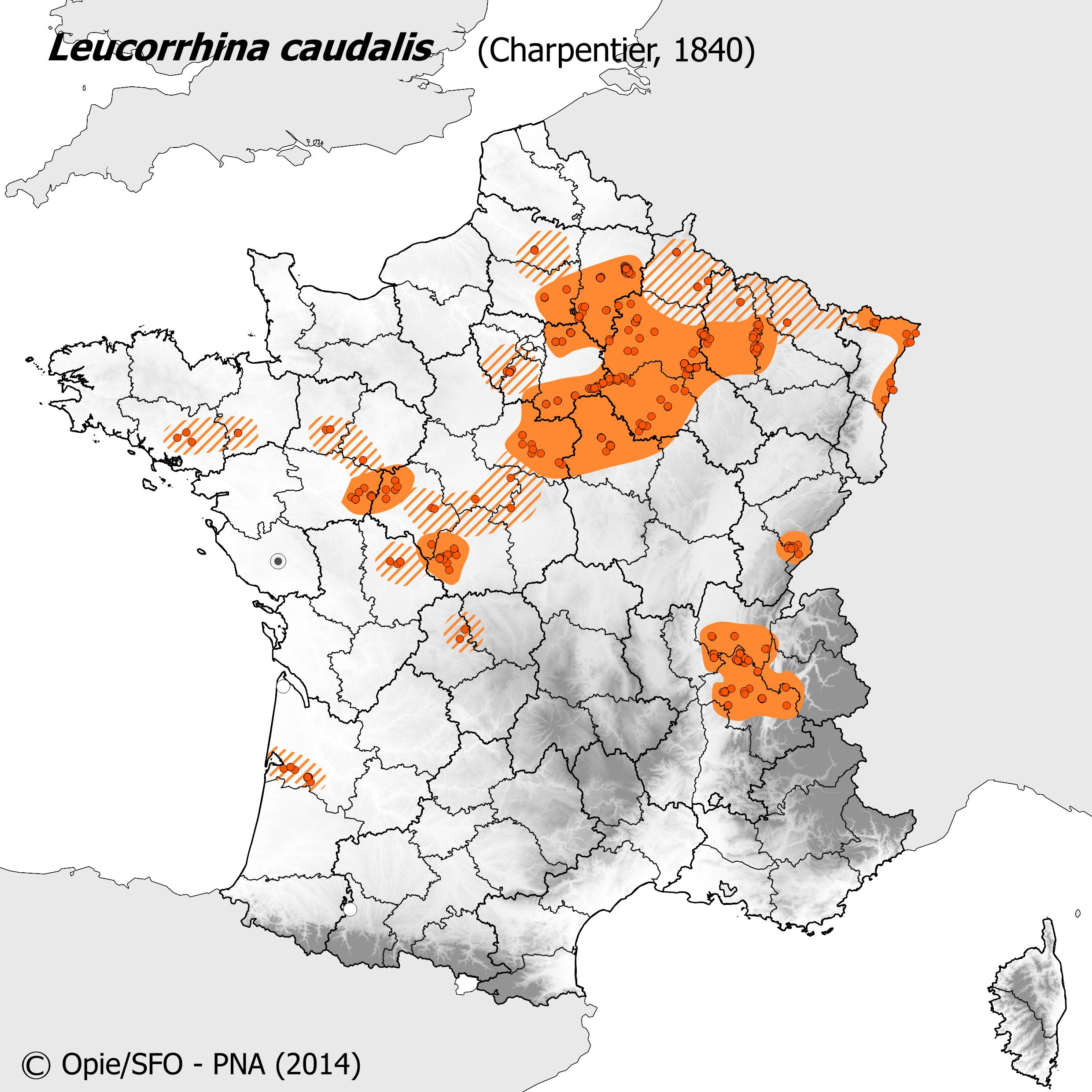 Plan National Actions Odonates | carte de repartition de leucorrhinia caudalis